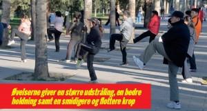 Kinesisk  tai chi kampkunst vinder udbredelse i hele verden