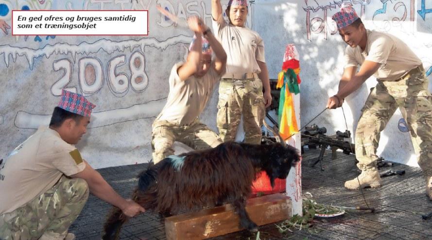 gurkha-soldater2-en-ged-ofres